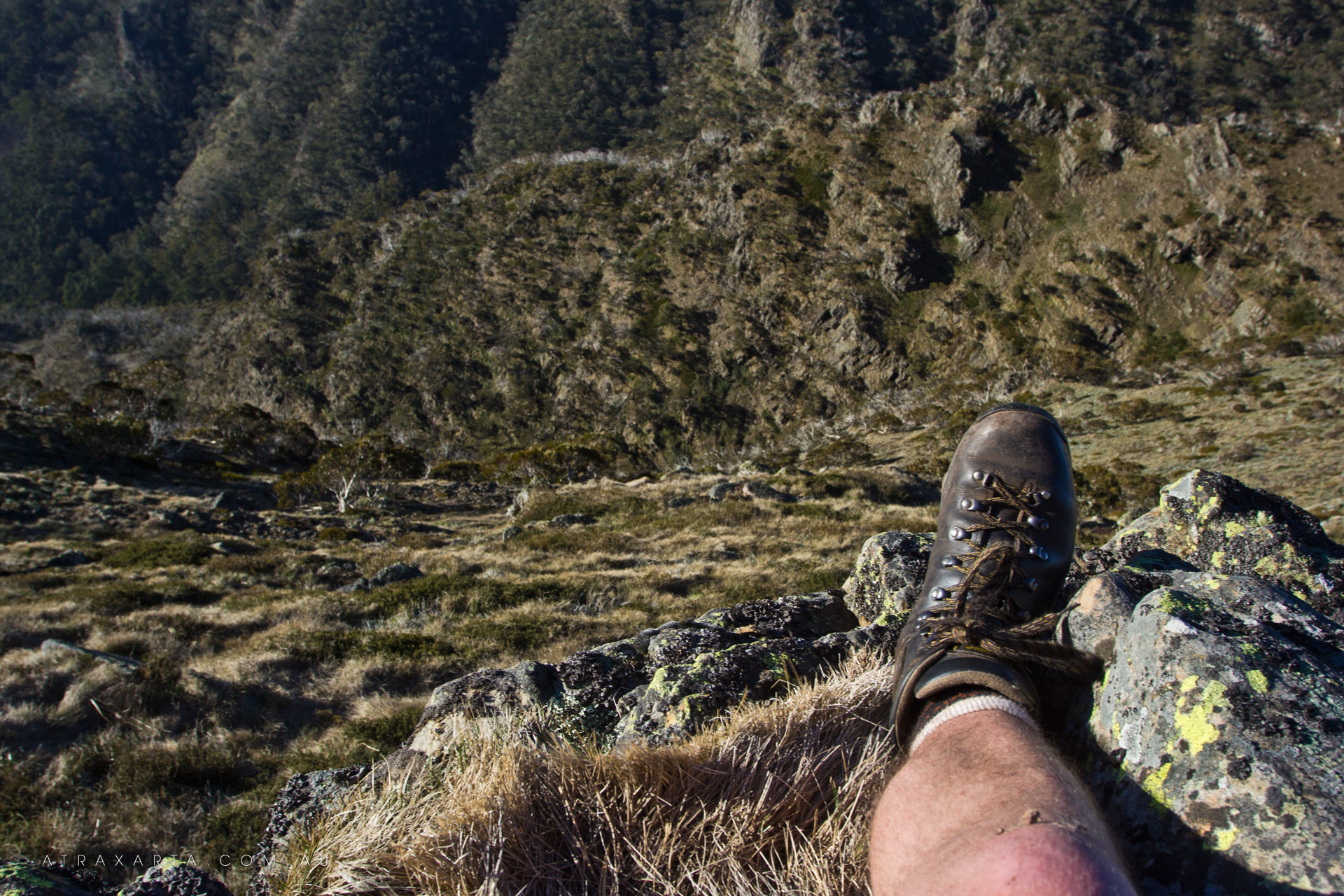 Straight Down, Mt Howitt, Alpine National Park, Victoria