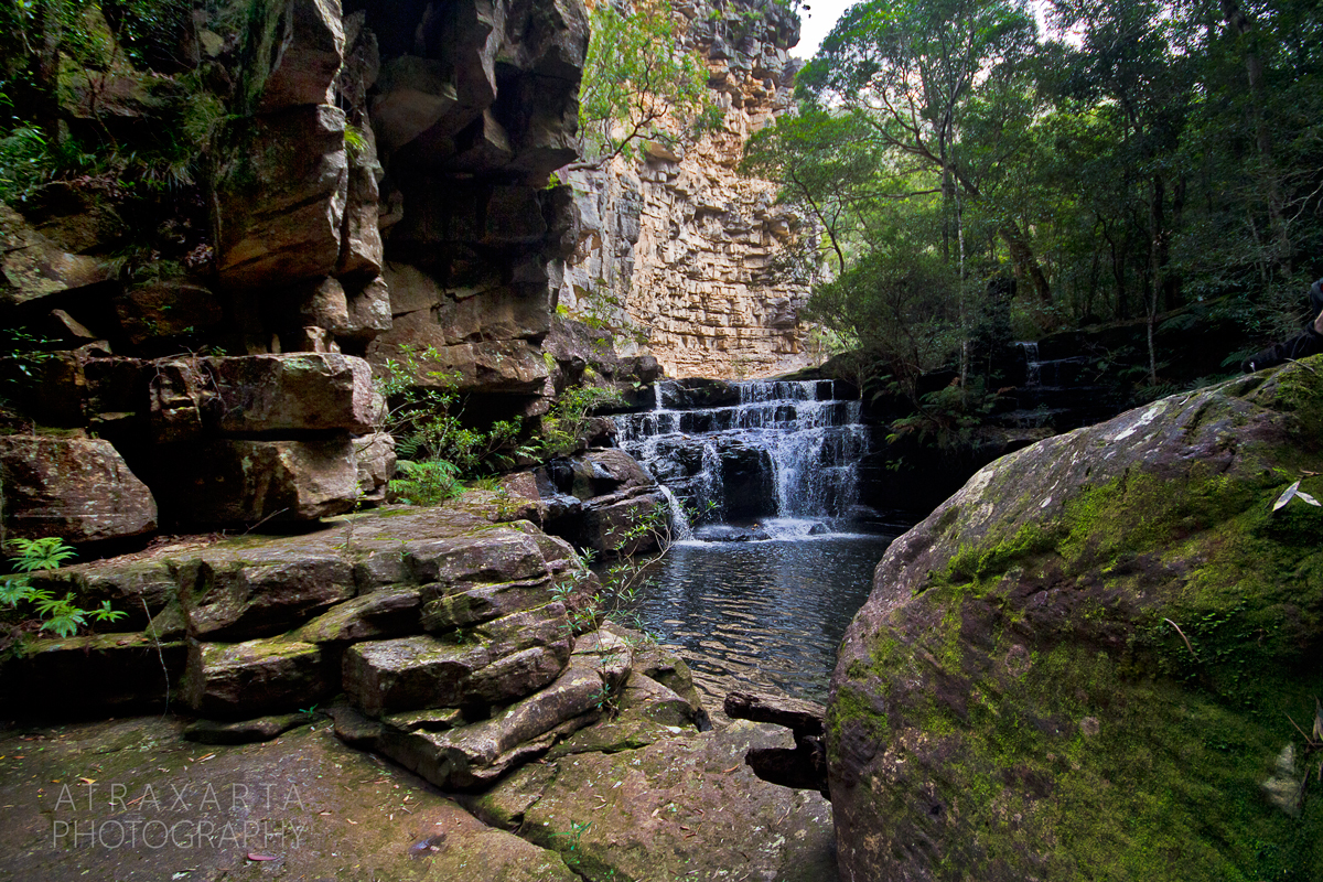 BMHR020, Wheeny Gap near Bilpin, Blue Mountains